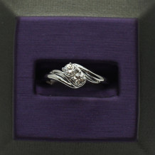 Denise Anne 14k White Gold u&I Diamond Ring